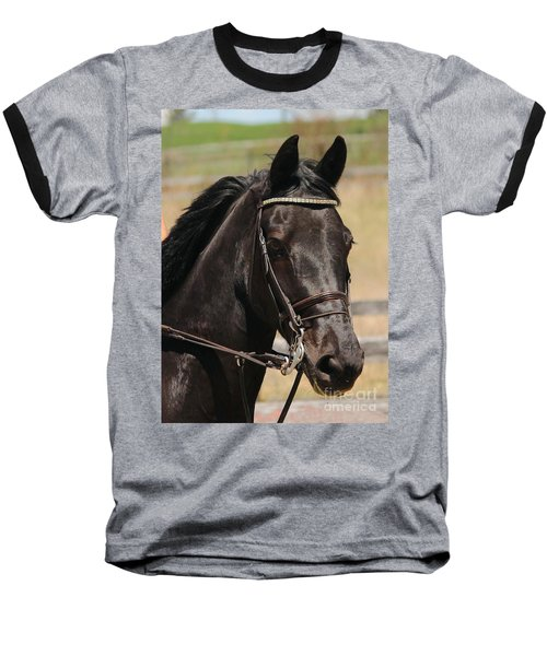 Black Mare Portrait Baseball T-Shirt