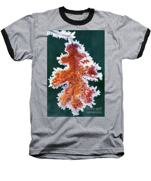 Baseball T-Shirt featuring the photograph Black Oak Leaf Rime Ice Yosemite National Park California by Dave Welling