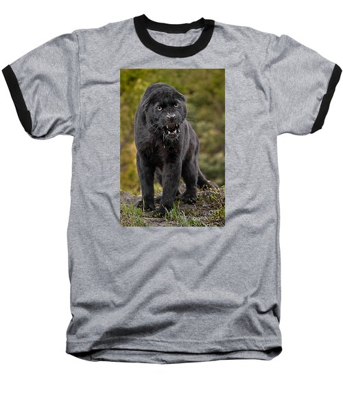 Black Panther Baseball T-Shirt