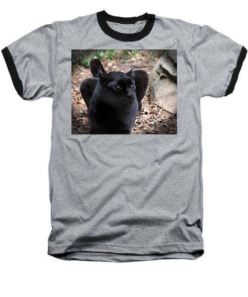 Black Panther Baseball T-Shirt by Judy Vincent