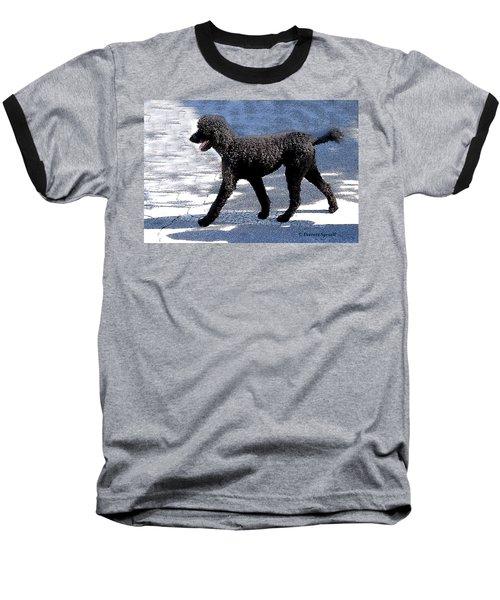 Black Poodle Baseball T-Shirt