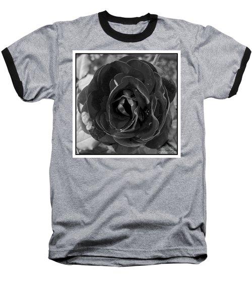 Baseball T-Shirt featuring the photograph Black Rose by Nina Ficur Feenan