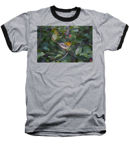 Baseball T-Shirt featuring the photograph Black-throated Green Warbler by James Petersen