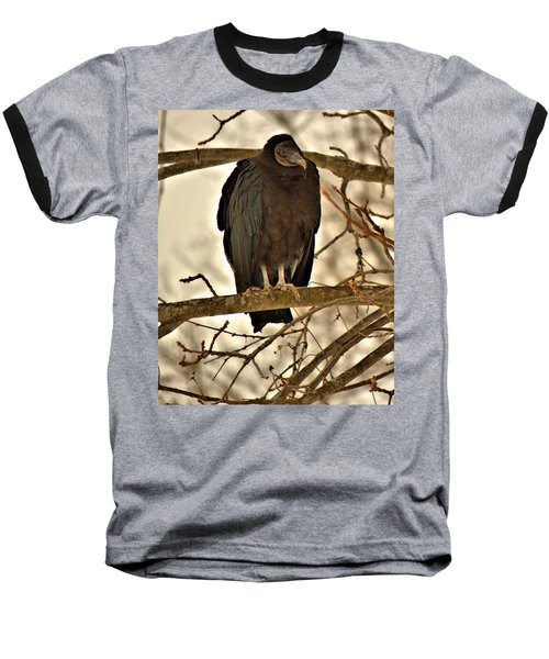 Black Vulture 1 Baseball T-Shirt