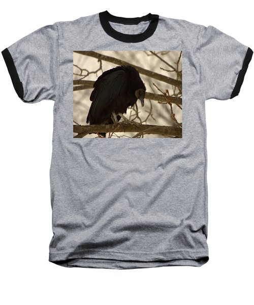 Black Vulture 4 Baseball T-Shirt