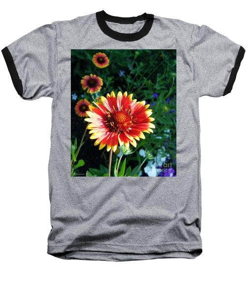 Blanket Flower Baseball T-Shirt