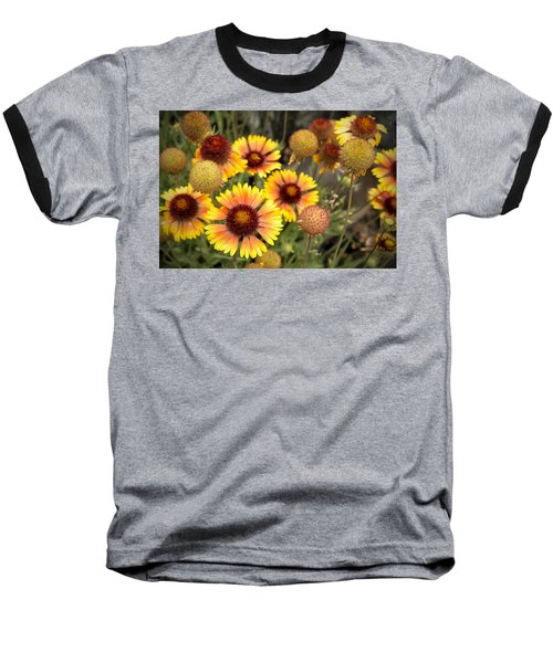 Baseball T-Shirt featuring the photograph Blanket Flowers  by Belinda Greb