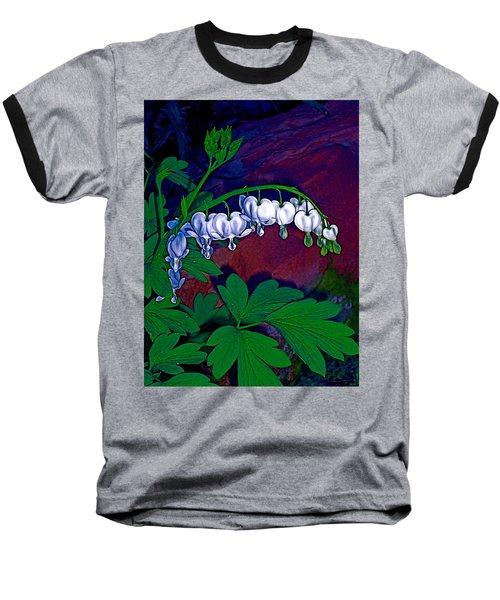 Bleeding Heart 1 Baseball T-Shirt by Pamela Cooper