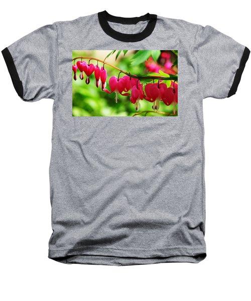 Romantic Bleeding Hearts Baseball T-Shirt by Debbie Oppermann