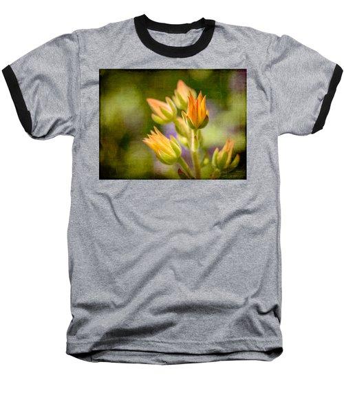Blooming Succulents I Baseball T-Shirt