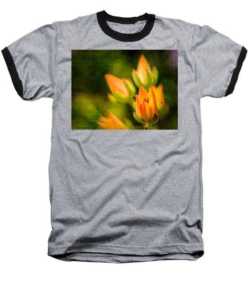 Blooming Succulents IIi Baseball T-Shirt