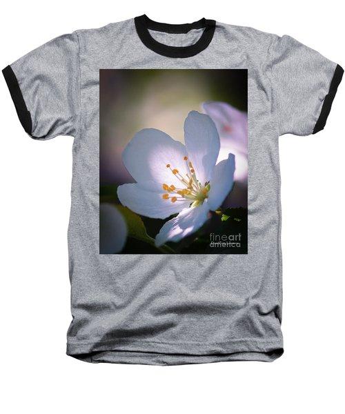 Blossom In The Sun Baseball T-Shirt
