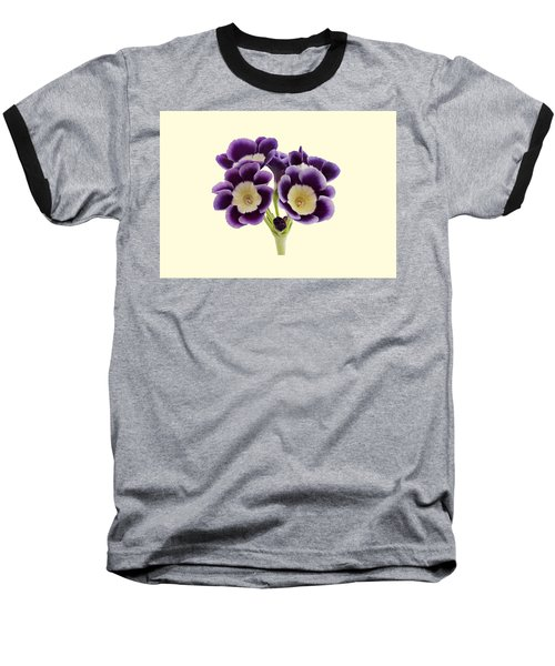 Baseball T-Shirt featuring the photograph Blue Auricula On A Cream Background by Paul Gulliver