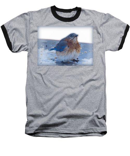 Blue Bird 4 Baseball T-Shirt