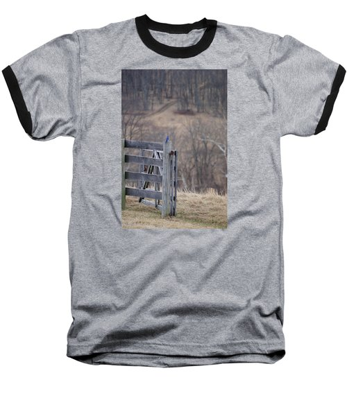 Blue Bird Baseball T-Shirt by Heidi Poulin
