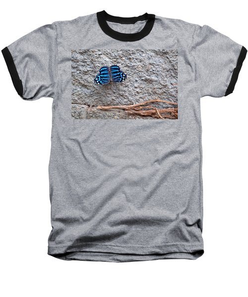 Blue Butterfly Myscelia Ethusa Art Prints Baseball T-Shirt by Valerie Garner
