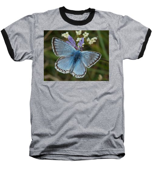 Blue Butterfly Baseball T-Shirt by Ron Harpham