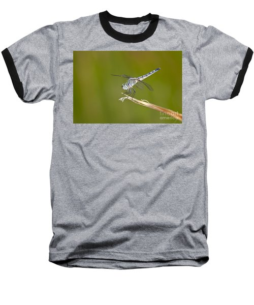 Baseball T-Shirt featuring the photograph Blue Dasher On The Edge by Bryan Keil