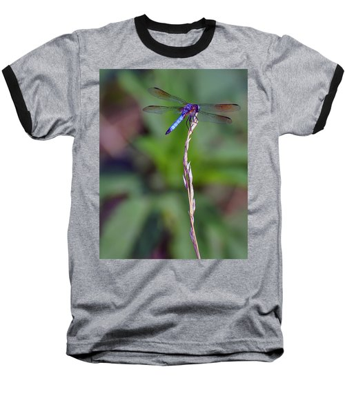 Blue Dragonfly On A Blade Of Grass  Baseball T-Shirt