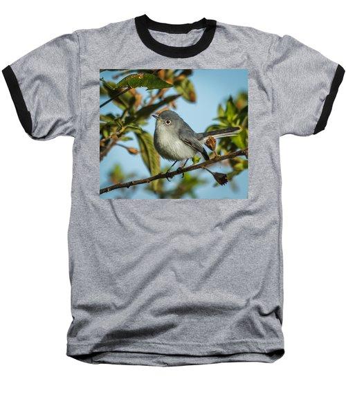 Blue-gray Gnatcatcher Baseball T-Shirt