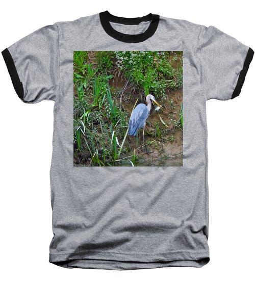 Blue Heron Baseball T-Shirt by Brian Williamson