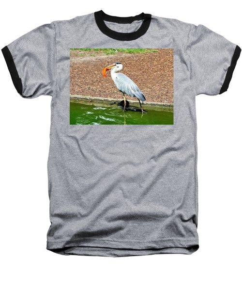 Baseball T-Shirt featuring the photograph Blue Heron Feeding by Joe  Ng