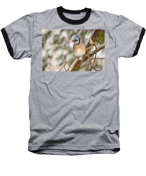 Blue Jay Baseball T-Shirt by Everet Regal