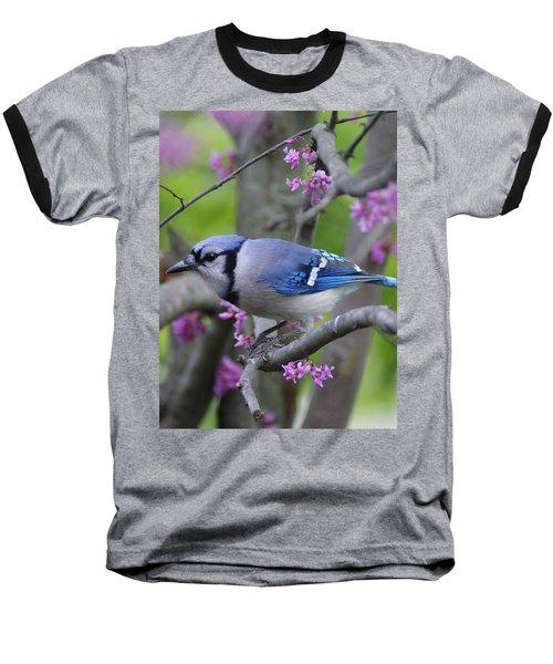 Blue Jay  Baseball T-Shirt by Heidi Poulin