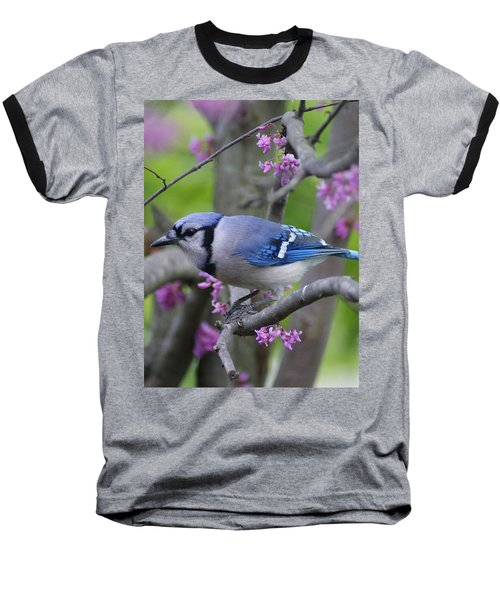 Blue Jay  Baseball T-Shirt