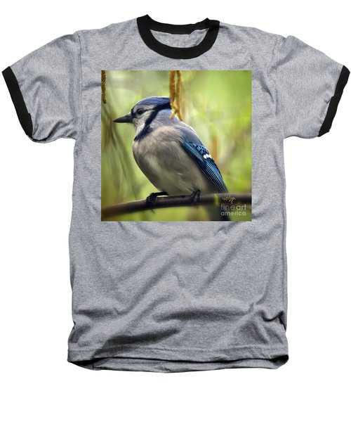 Blue Jay On A Misty Spring Day - Square Format Baseball T-Shirt by Lois Bryan