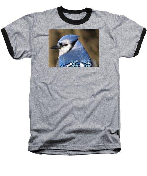 Blue Jay Profile Baseball T-Shirt by MTBobbins Photography