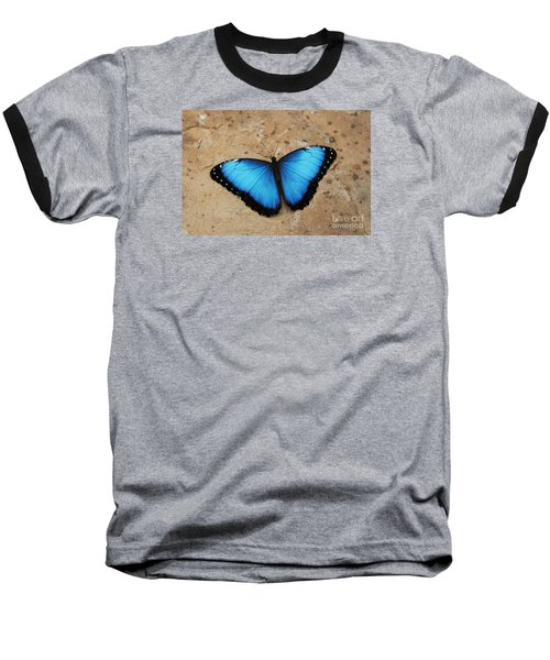 Blue Morpho #2 Baseball T-Shirt by Judy Whitton