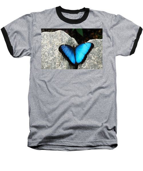 Blue Morpho Butterfly Baseball T-Shirt