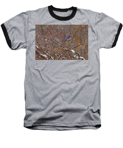 Baseball T-Shirt featuring the photograph Blue Norther by Gary Holmes