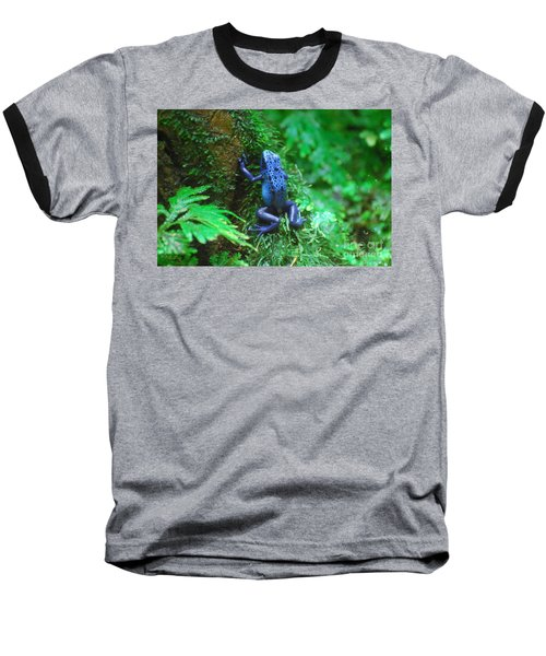 Blue Poison Dart Frog Baseball T-Shirt by DejaVu Designs