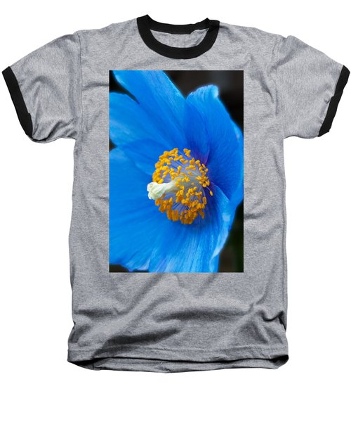 Blue Poppy Baseball T-Shirt by Michael Porchik