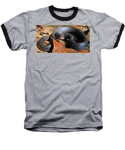 Blue Racer Baseball T-Shirt