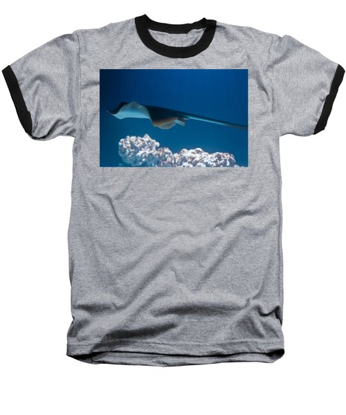 Baseball T-Shirt featuring the photograph Blue Spotted Fantail Ray by Eti Reid