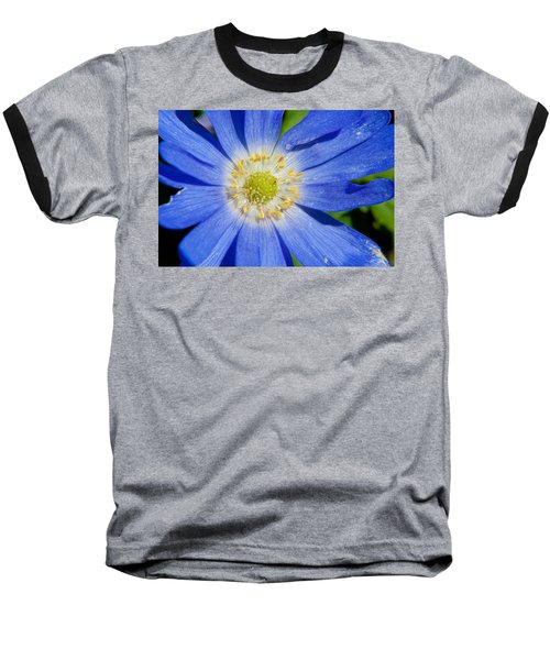 Blue Swan River Daisy Baseball T-Shirt