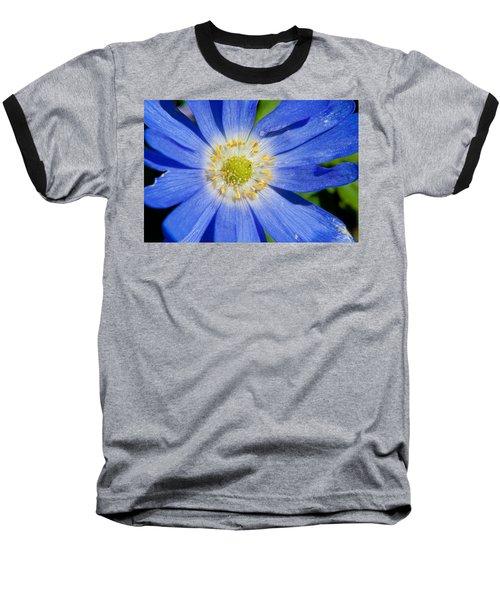 Blue Swan River Daisy Baseball T-Shirt by Tikvah's Hope
