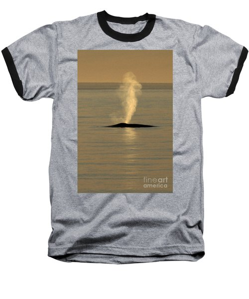 Baseball T-Shirt featuring the photograph Blue Whale At Sunset In Monterey Bay California  2013 by California Views Mr Pat Hathaway Archives
