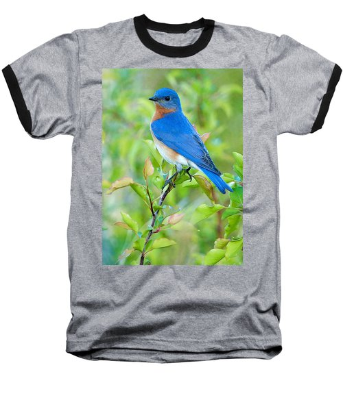 Bluebird Joy Baseball T-Shirt
