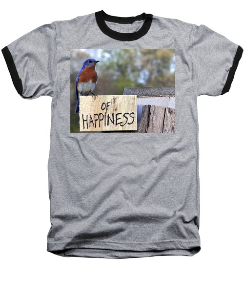 Bluebird Of Happiness Baseball T-Shirt by John Crothers