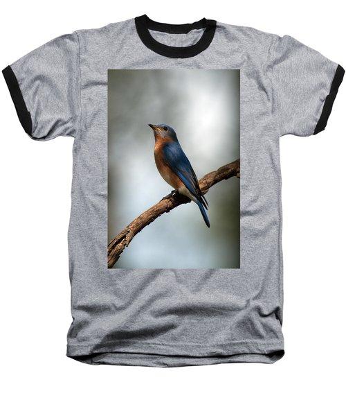 Bluebird -why Yes Baseball T-Shirt