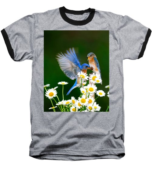 Bluebirds And Daisies Baseball T-Shirt