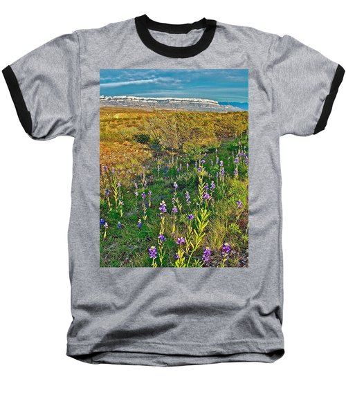 Bluebonnets And Creosote Bushes In Big Bend National Park-texas Baseball T-Shirt