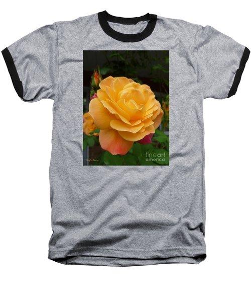 Baseball T-Shirt featuring the photograph Blushing Rosalina by Lingfai Leung