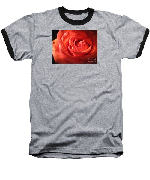 Blushing Orange Rose 1 Baseball T-Shirt