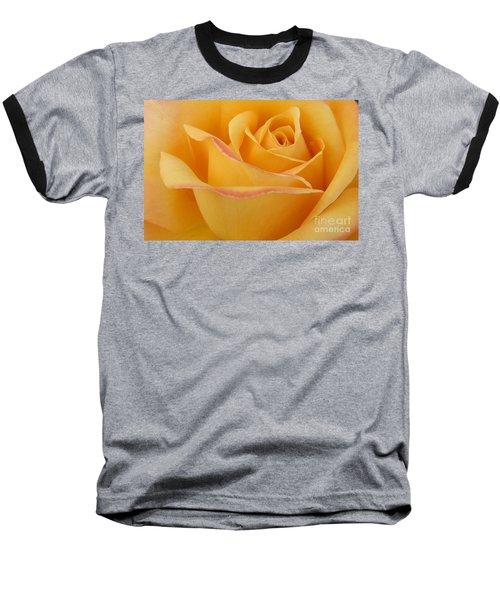 Blushing Yellow Rose Baseball T-Shirt