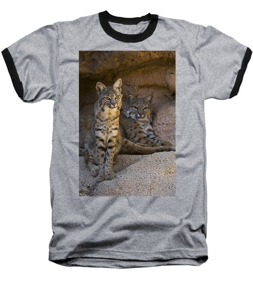 Baseball T-Shirt featuring the photograph Bobcat 8 by Arterra Picture Library